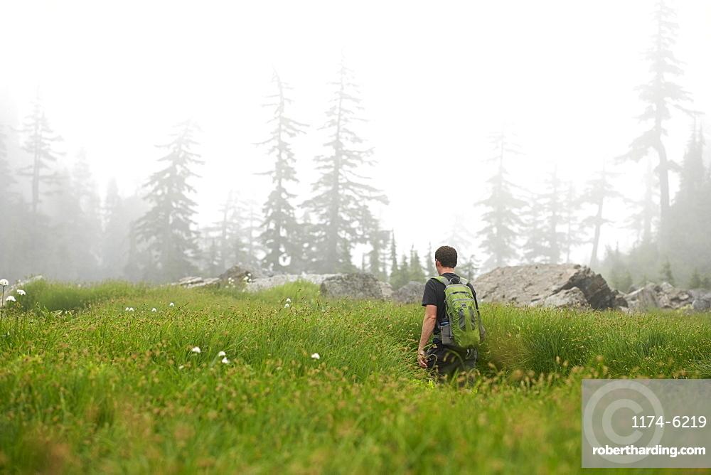 Man hiking in rural field, Leavenworth, Washington, USA