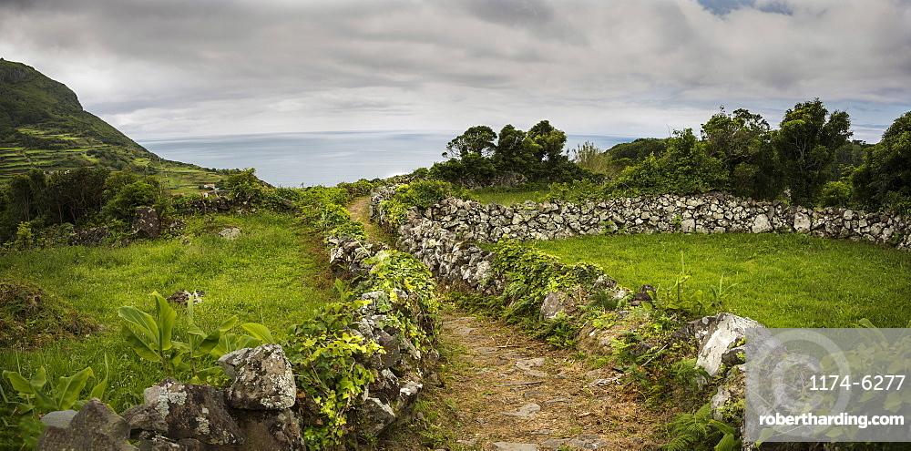 Dirt path through rural fields, Azores Islands, Flores, Portugal