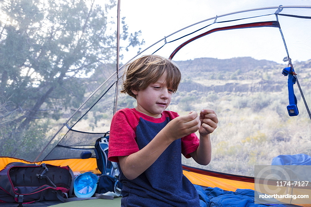 Six year old boy playing in tent