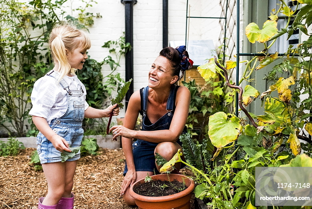 Smiling woman and girl in a garden, picking fresh vegetables