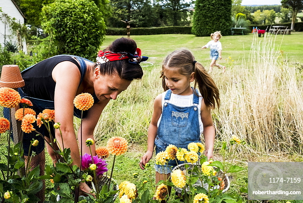 Girl and woman standing in a garden, picking pink and yellow Dahlias