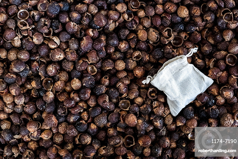 High angle close up of dried brown soap nuts