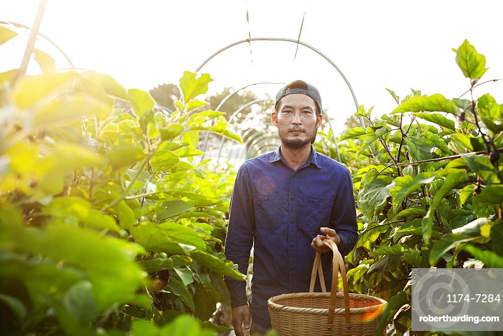 Japanese man wearing cap standing in vegetable field, holding basket, looking at camera, Kyushu, Japan