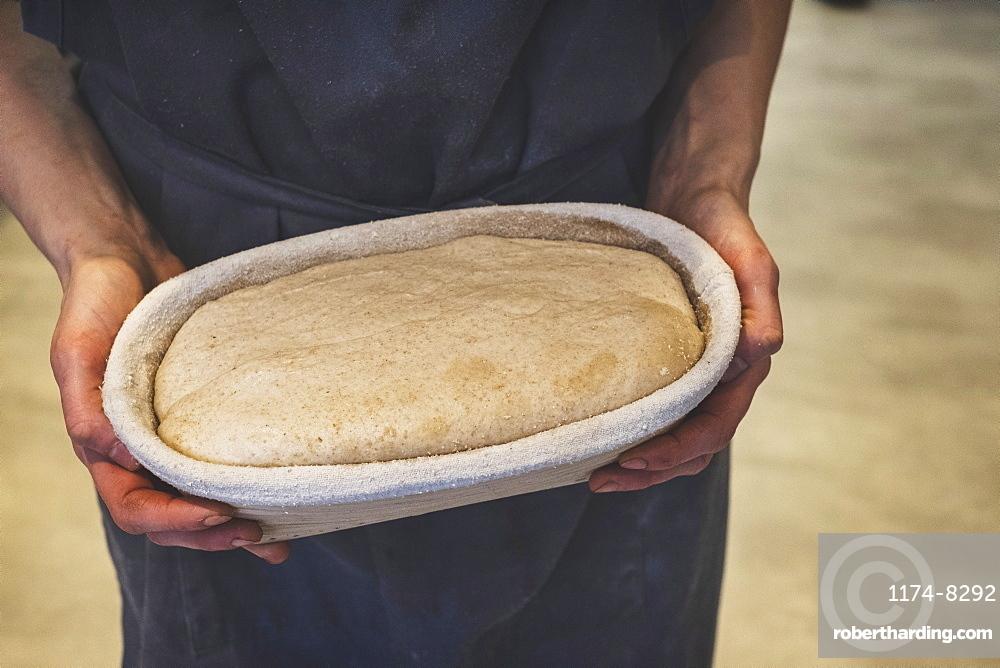 Artisan bakery making special sourdough bread, a proving basket of dough