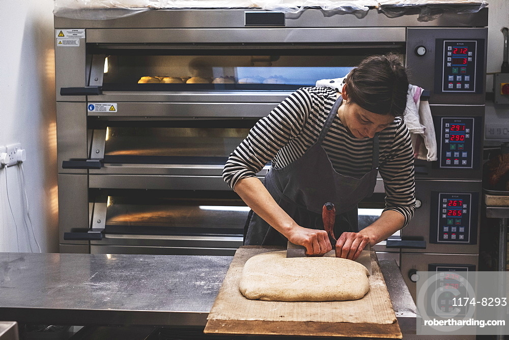 Baker dividing dough in sections for baking by a large commercial oven