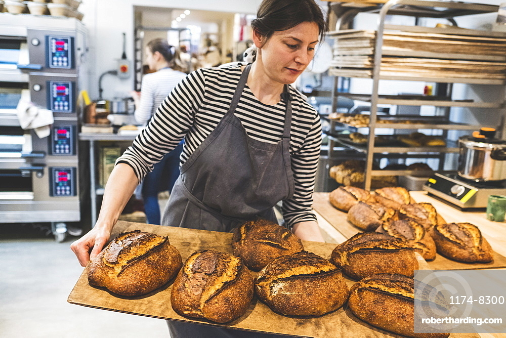 Artisan baker holding a tray of special sourdough bread