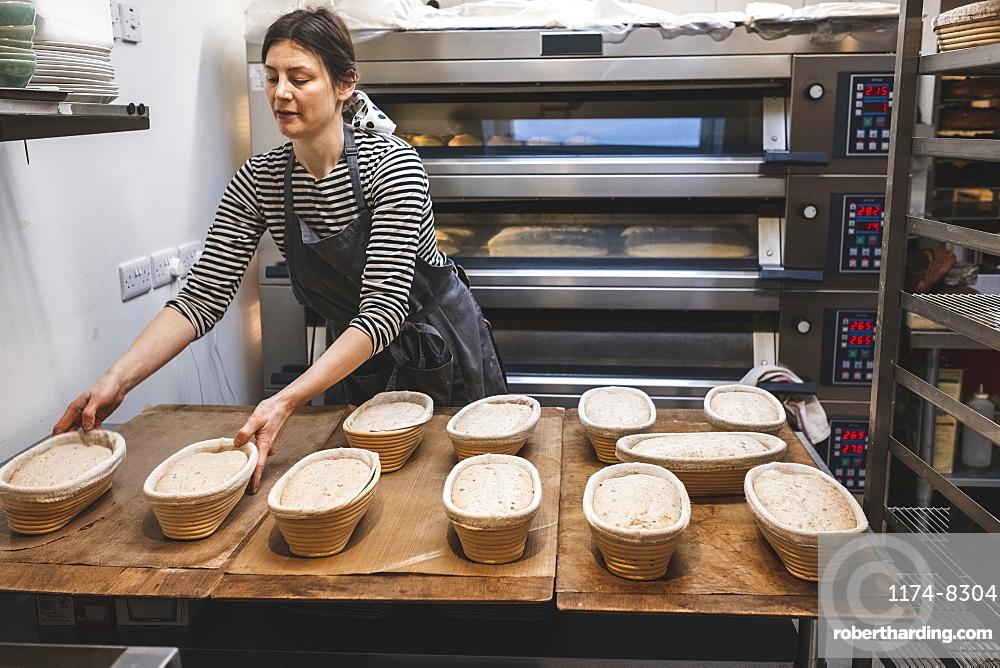 A baker checking proving baskets with risen dough before baking, artisan bakery making sourdough bread