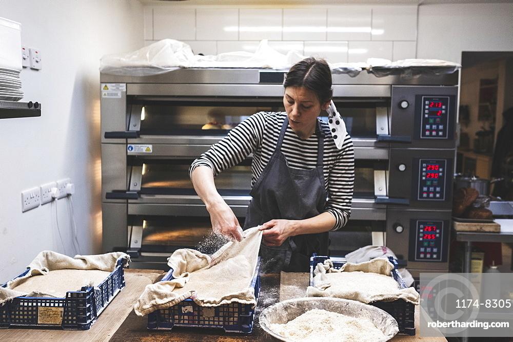 Artisan bakery making special sourdough bread, baker checking risen dough in plastic trays