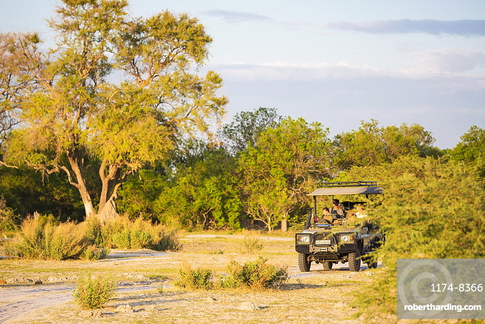 A party of tourists in a safari jeep on the edge of woodland, Moremi Game Reserve, Botswana
