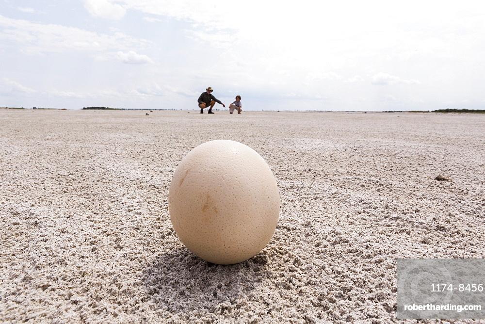 close up of ostrich egg, Nxai Pan, Botswana
