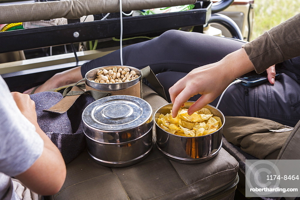 hands reaching for snacks in safari vehicle