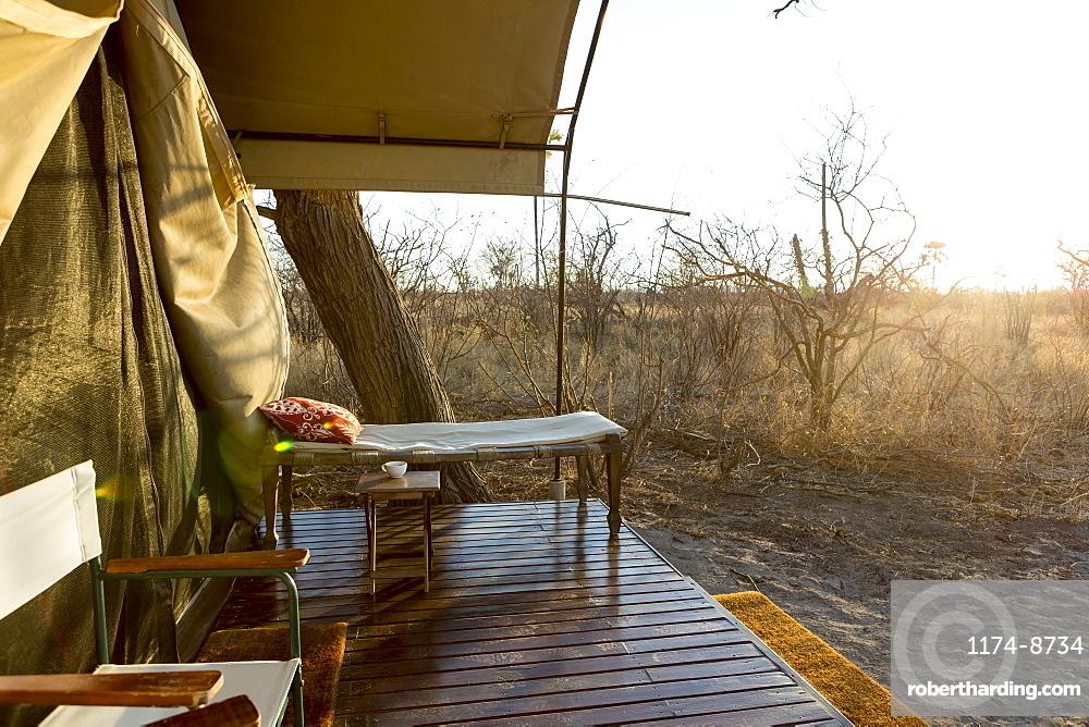 Tented camp in the Kalahari desert, dawn light