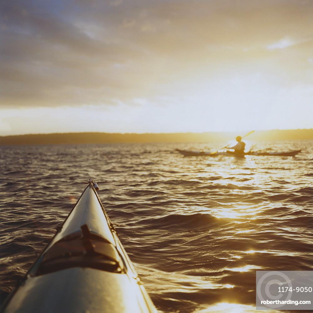 Person sea kayaking at dusk, Washington, United States