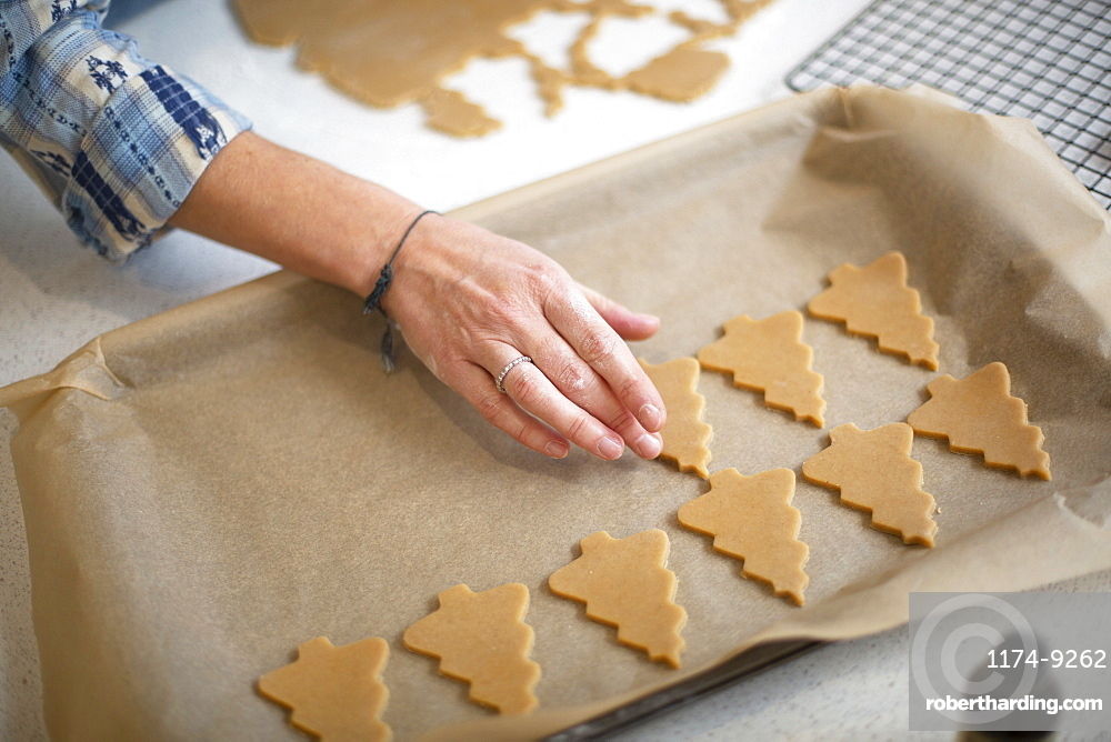 High angle close up of woman placing Christmas Tree cookies on a baking tray