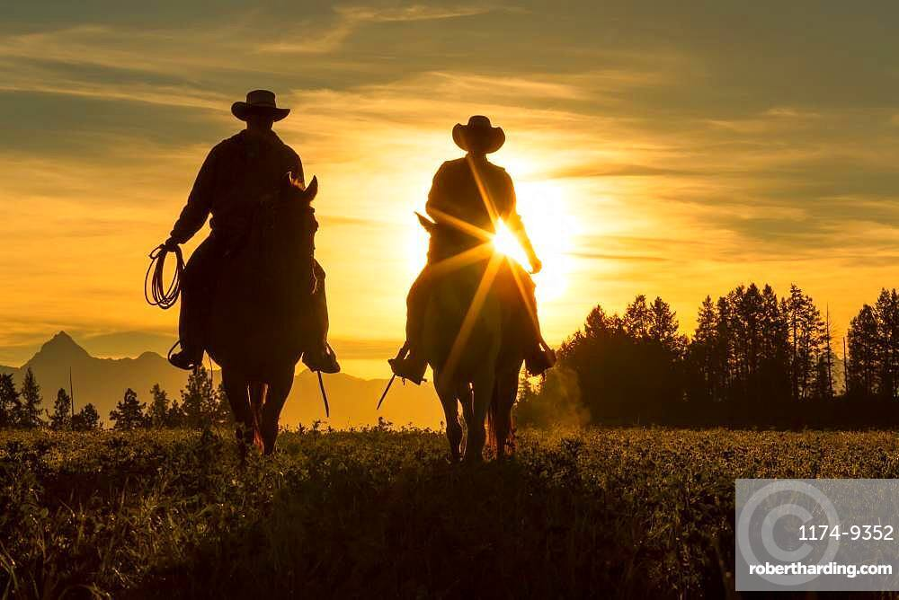 Two cowboys riding into the sunset across grassland with mountains behind, British Colombia, Canada