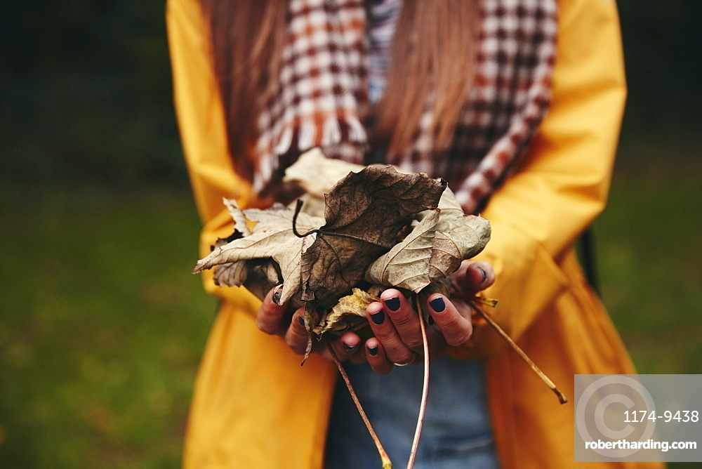 Hands holding dried leaves to camera