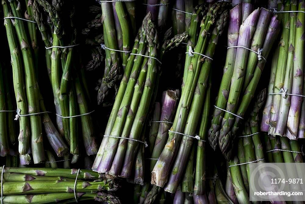 High angle close up of freshly picked bunches of green asparagus, Oxfordshire, United Kingdom
