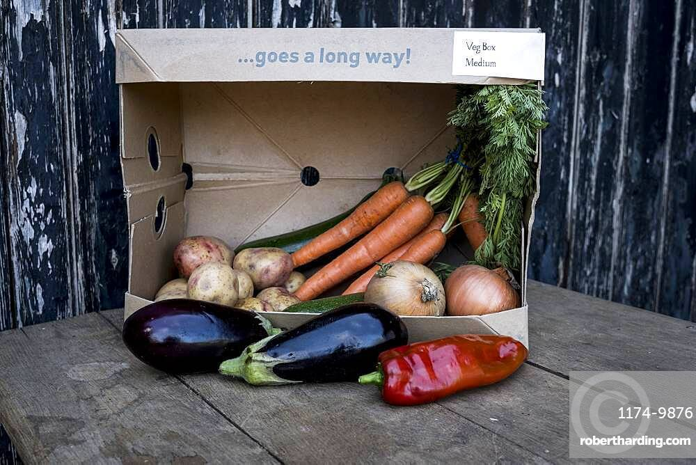Close up of an organic vegetable box with a selection of fresh produce, Oxfordshire, United Kingdom
