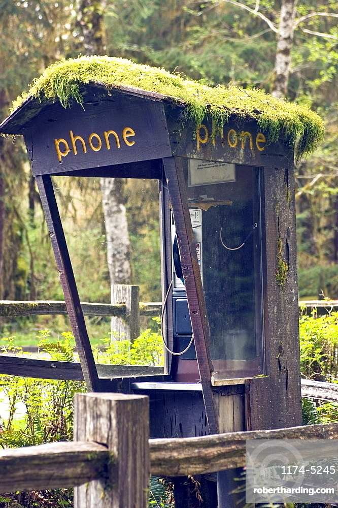 Moss Covered Phone Booth, Forks, WA, US