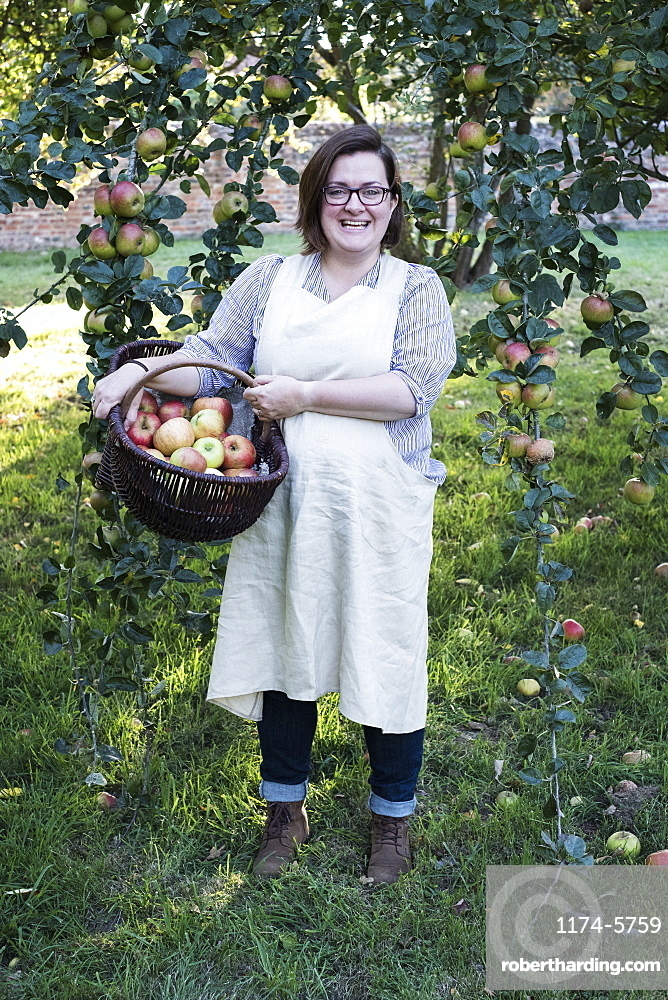 Woman wearing apron holding brown wicker basket with freshly picked apples, smiling at camera, Oxfordshire, England