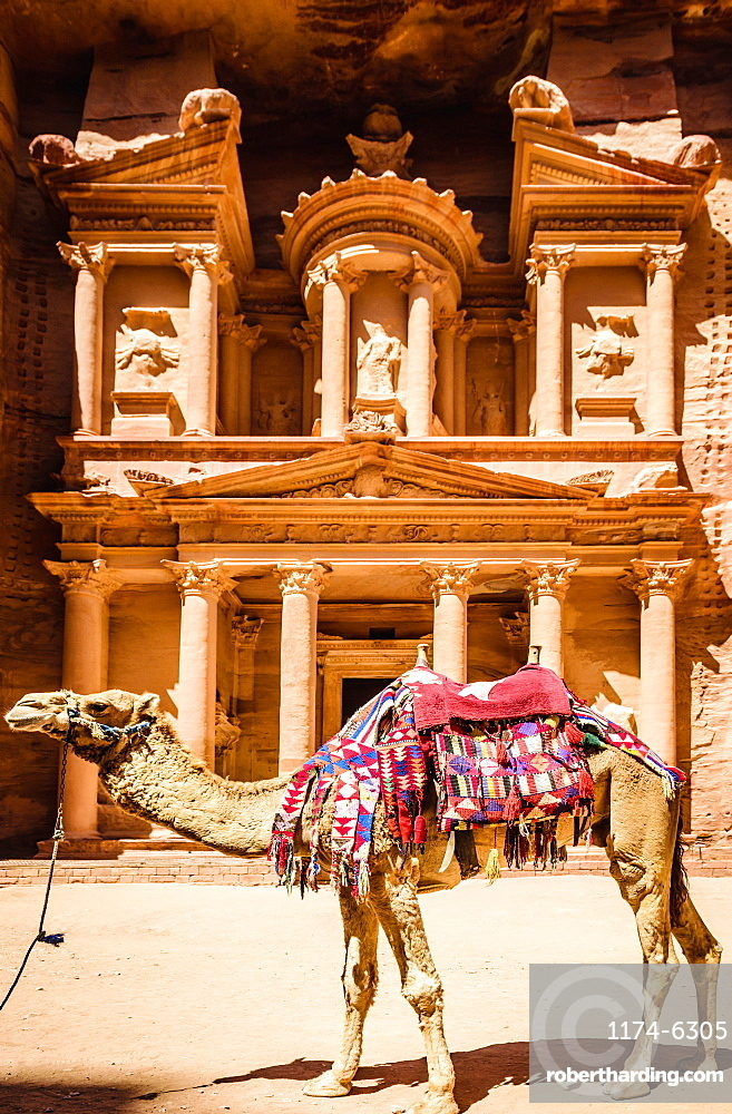 Camel wearing harness by ancient building, Petra, Jordan, jordan, Petra, Jordan, Jordan