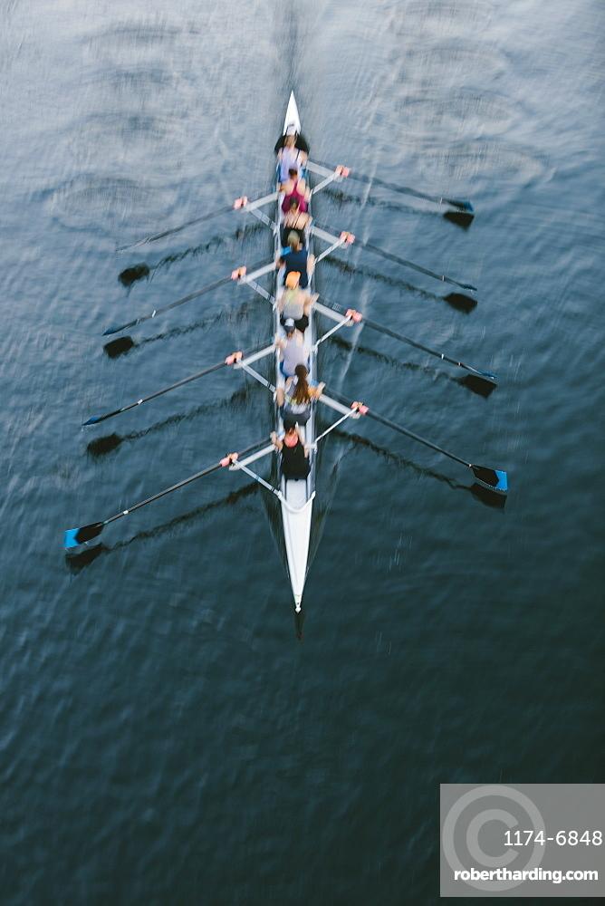 Female crew racers rowing, high angle view, Lake Union, Seattle, Washington, United States of America