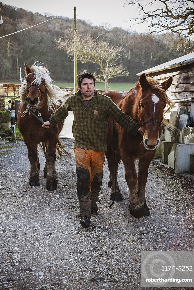 Portrait of a logger with two of his work horses, Devon, United Kingdom