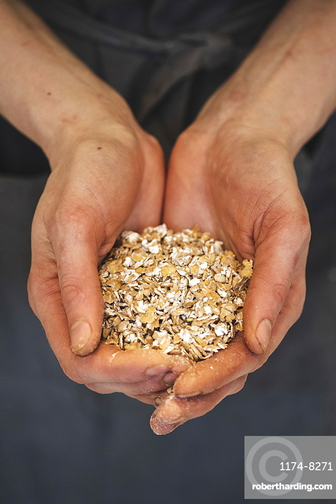 Hands full of special ingredients, flour and grains for sourdough bread