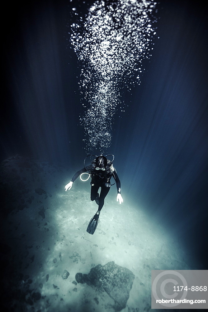 High angle underwater view of diver wearing wet suit and flippers, air bubbles rising, United States of America