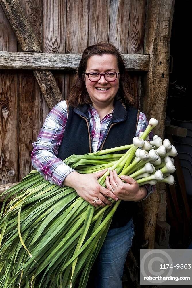 Smiling woman holding bunch of freshly picked garlic, Oxfordshire, United Kingdom