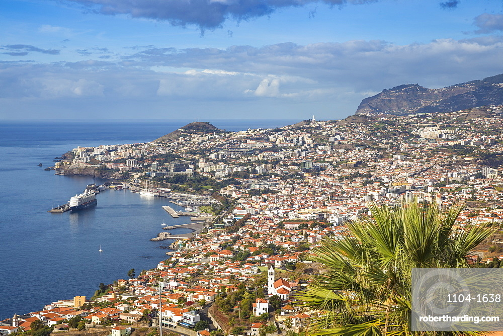 View looking towards Sao Goncalo Church and harbour, Funchal, Madeira, Portugal, Atlantic, Europe