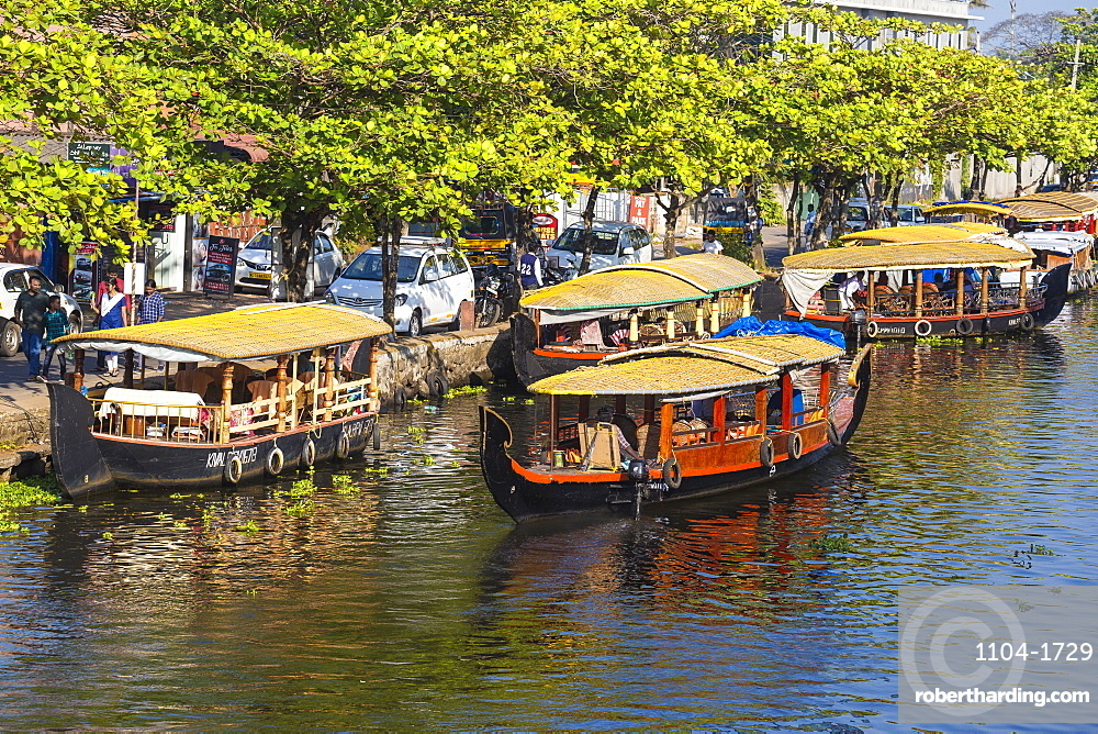 Shikara boats, Backwaters, Alappuzha (Alleppey), Kerala, India, Asia
