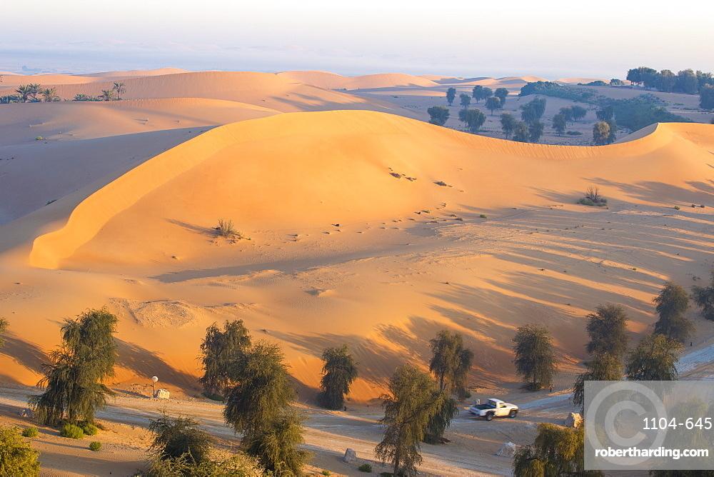 Remah Desert, Al Ain, Abu Dhabi, United Arab Emirates, Middle East