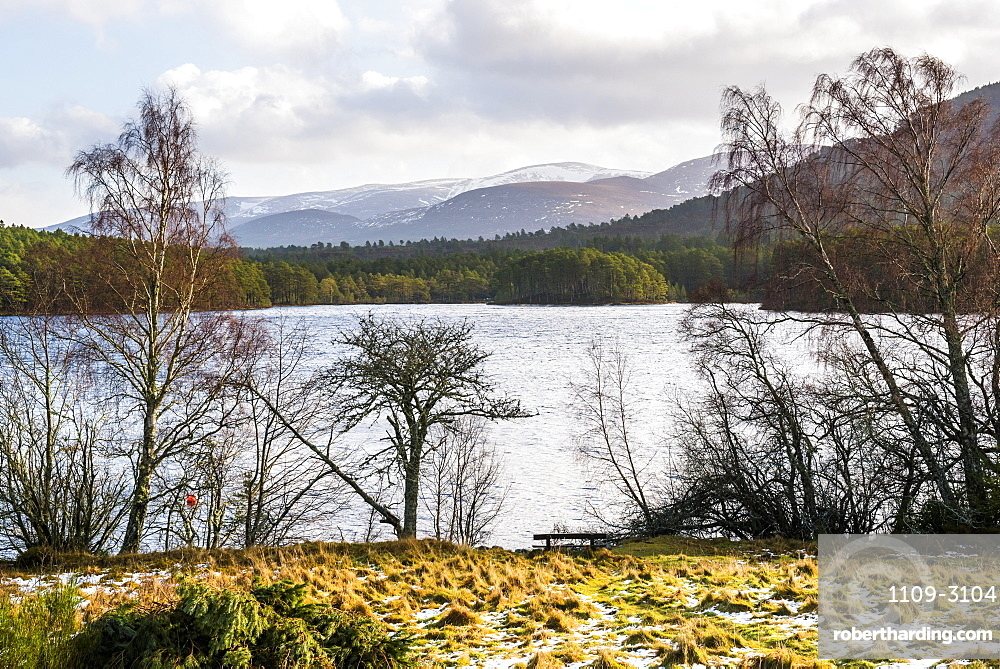 Loch an Eilein with Cairngorm Mountain behind, Aviemore, Cairngorms National Park, Scotland, United Kingdom, Europe