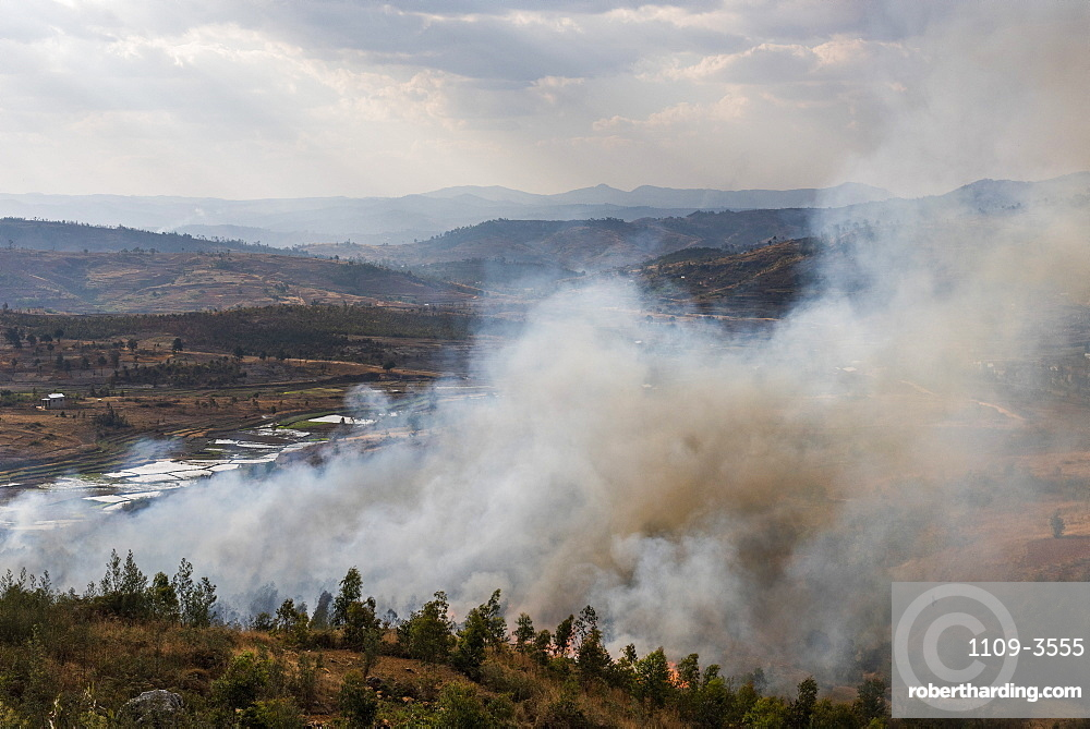 Slash and burn forest fire, Antsirabe, Vakinankaratra Region, Madagascar, Africa
