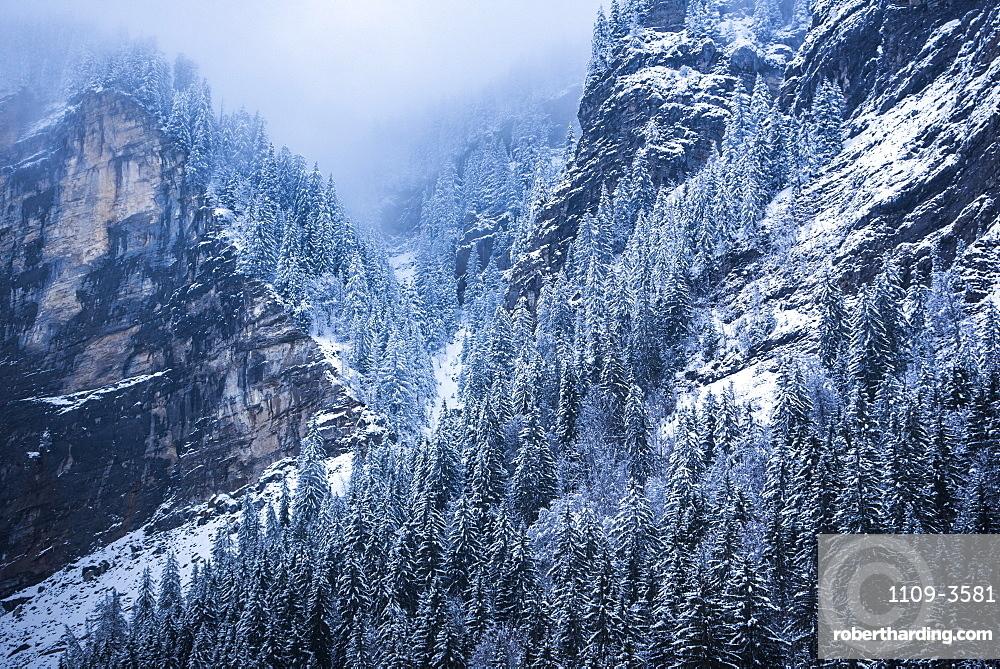 Winter landscape, Avoriaz Ski Area, Port du Soleil, Auvergne Rhone Alpes, French Alps, France, Europe