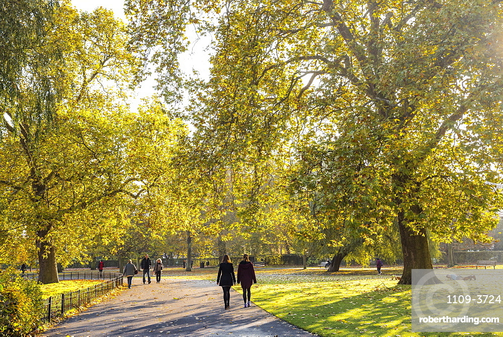 Autumn in Regents Park, one of the Royal Parks of London, England, United Kingdom, Europe