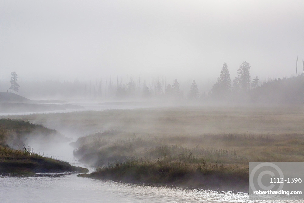 Early morning fog along the Madison River in Yellowstone National Park, UNESCO World Heritage Site, Wyoming, United States of America, North America