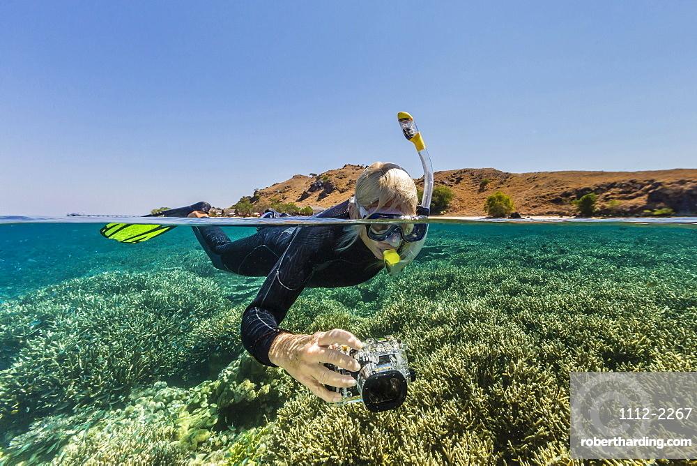 Snorkeler on the house reef at Komodo Diving Resort, Sebayur Island, Komodo Island National Park, Indonesia, Southeast Asia, Asia
