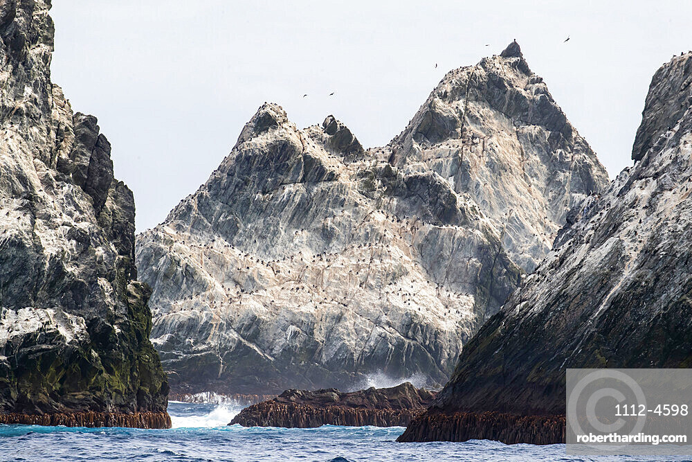 The remote islets known as Shag Rocks, South Georgia, UK Overseas Protectorate, Polar Regions