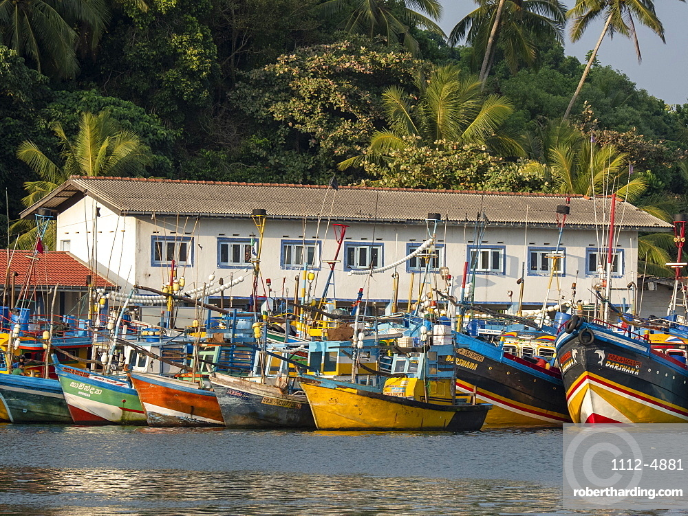 Commercial fishing boats line the dock in the port of Mirissa, Indian Ocean, Sri Lanka, Asia