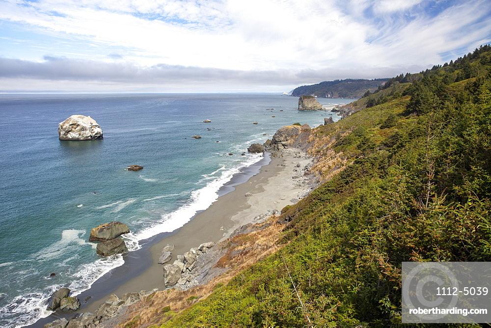 The rugged coastline along Highway 101 near Klamath, California, United States of America, North America