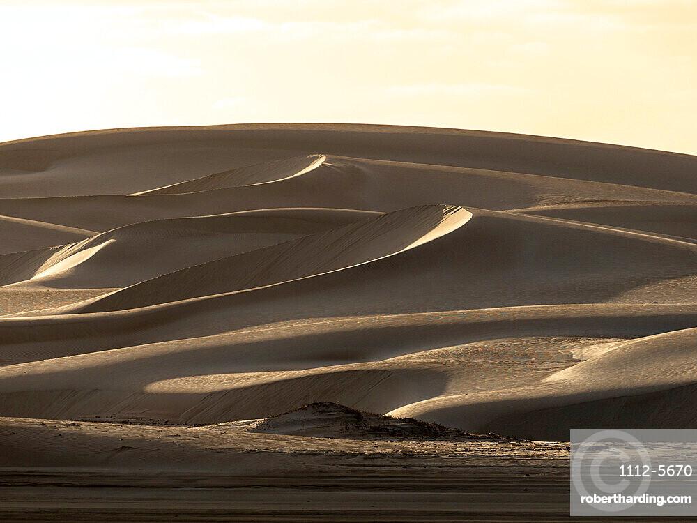 Wind swept barkan sand dunes on the barrier island of Isla Magdalena, Baja California Sur, Mexico.
