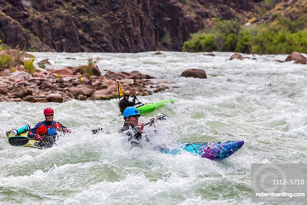 Shooting rapids in a kayak on the Colorado River, Grand Canyon National Park, Arizona, USA, North America.