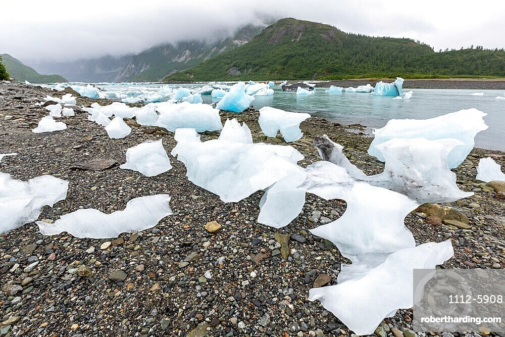 Glacial ice stranded on the beach at low tide in the East arm of Glacier Bay National Park, UNESCO World Heritage Site, Southeast Alaska, United States of America, North America