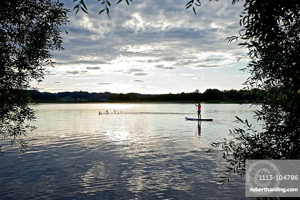 Woman stand up paddling on lake Chiemsee in sunset, Chiemgau, Bavaria, Germany