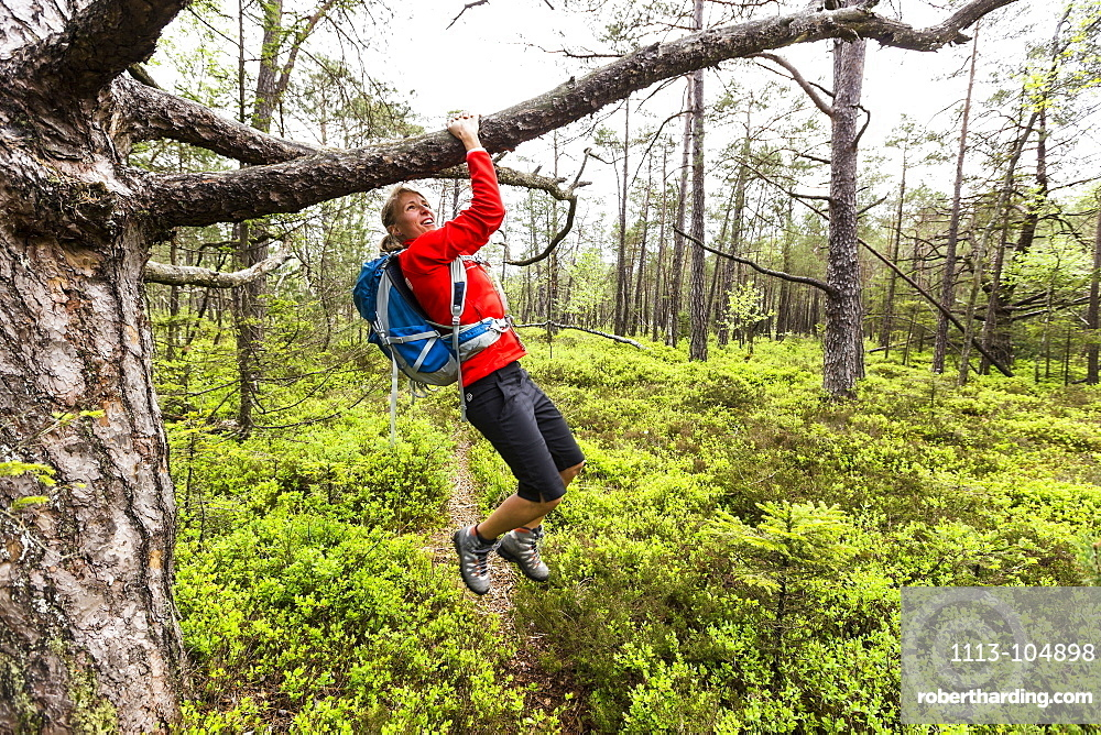 young woman doing pull-ups in a moorland forest, Berg, Upper Bavaria, Germany