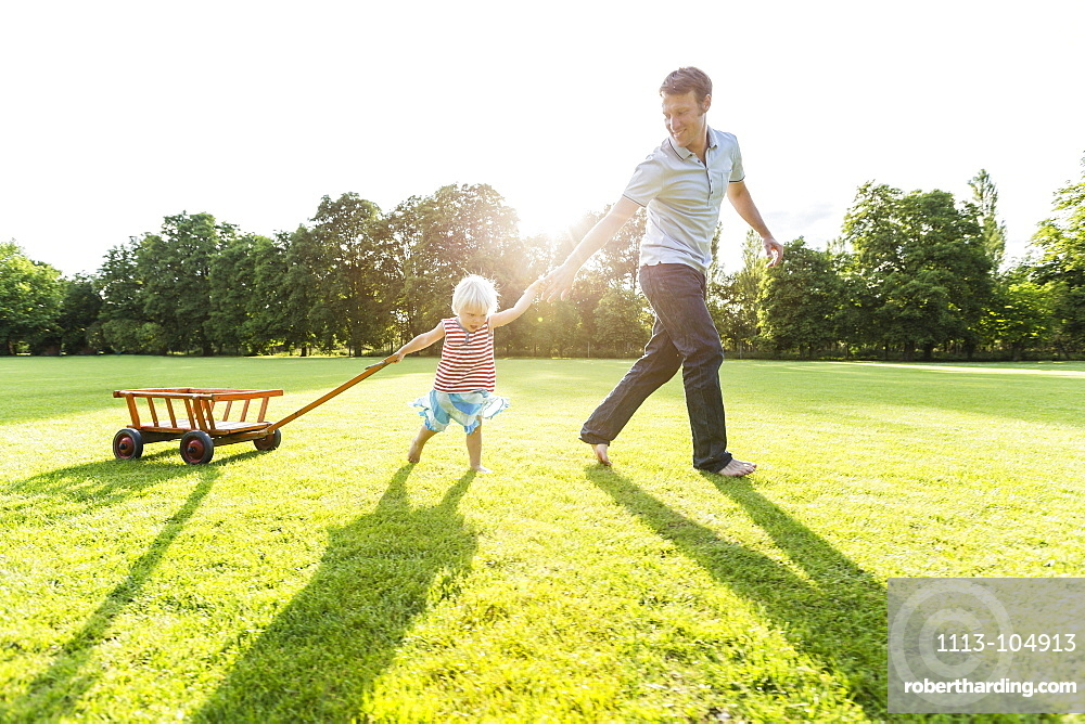 Young father and his two-year-old daughter pulling a wagon over a meadow, Speyer, Rheinland-Pfalz, Germany