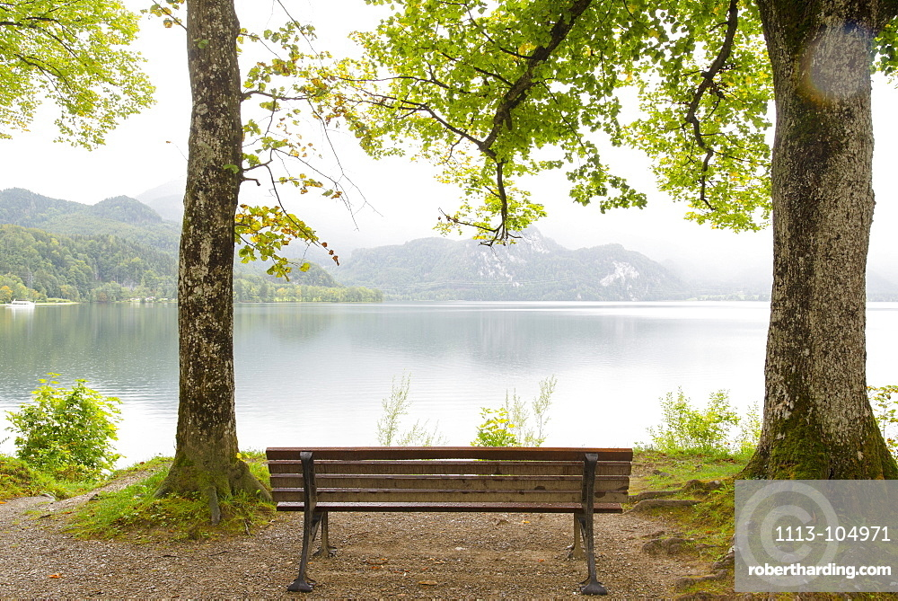 Lonely bench under trees at Lake Kochel. Mist descending from the mountains into the valley, Autumnal atmosphere, Kochel, Bavaria, Germany