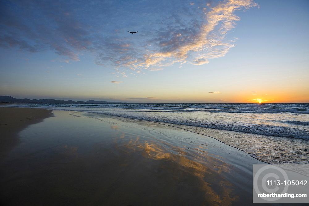 Reflection of the clouds, Playa de Sotavento, between Jandia und Costa Calma, Fuerteventura, Canary Islands, Spain